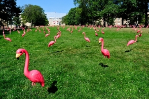 If only it was this warm out during World Water Week, but we'll still decorate it with water bottles instead of flamingos.