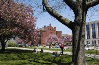Remember when Library Mall used to look like this? Well at least the flowers and leaves will start to come back!